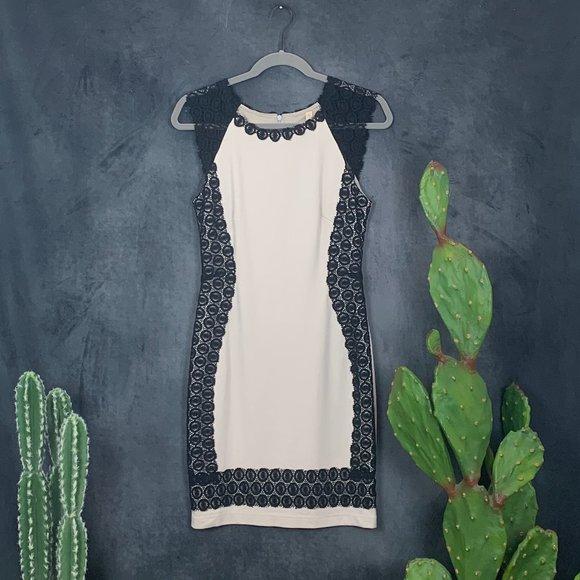 Bailey 44 Dresses & Skirts - CLEARANCE Bailey44 Lace Bodycon Sheath Dress S